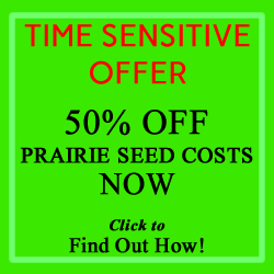 Half Off Prairie Seed- Limited Time Offer
